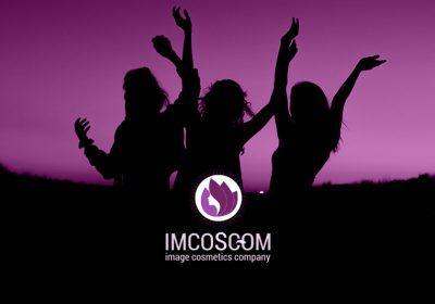 Предложение и реализация в IMCOSCOM