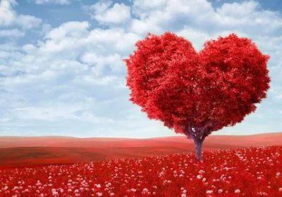 День св Валентина  праздник который ждут